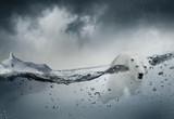 Ours blanc polaire seul dans l'océan - 171186396