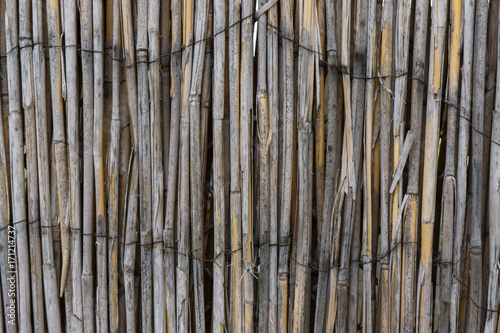 Fotobehang Bamboe hintergrund struktur holz latten maserung