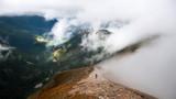 Fototapeta Nature - Alone traveller © Maciej Osiewała
