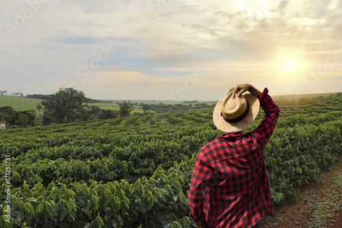 Leinwandbild Motiv Farmer working on coffee field at sunset outdoor