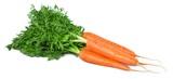 Carrot. - 171253714