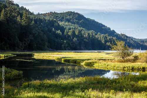 Fotobehang Nachtblauw Landscape scene of water with tidal inlets of marsh grasses, and mountains in the background.