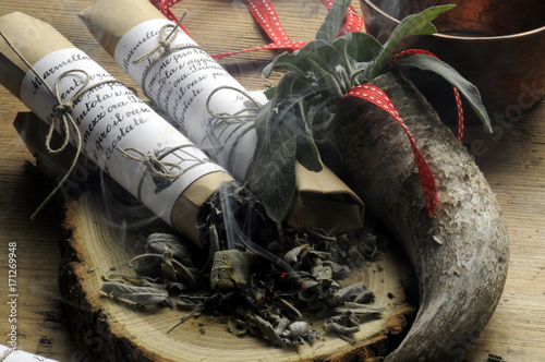 Papiers peints Herbe Salvia officinalis Echter Salbei Kryddsalvia Incenso Common Incense sage Szałwia Encens lekarska Sauge officinale セージ 藥用鼠尾草 Räucherwerk fumigation