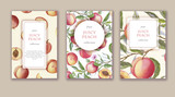 Hand drawn watercolor banner set with ripe peaches. Card design for sweets and pastries filled with fruit, candy, yogurt, dessert menu, health care products. With place for text