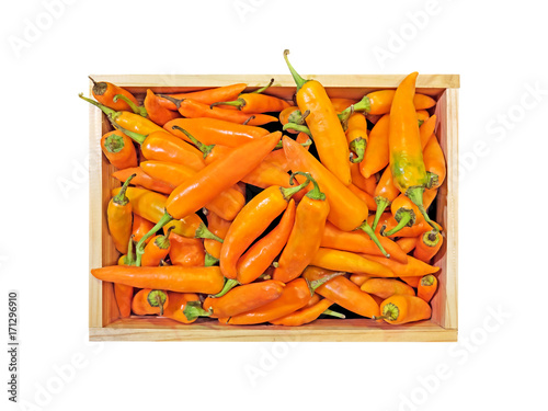 Papiers peints Hot chili Peppers Yellow Chili Pepper in The Wooden Box on White Background, Clipping Path