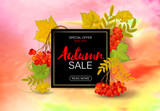 Autumn rowan banner on a bright background. Perfect for autumn sale, school or Thankgiving day banners decoration. Vector illustration.