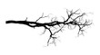 Dry Tree Branch Vector Shape Design - 171311736