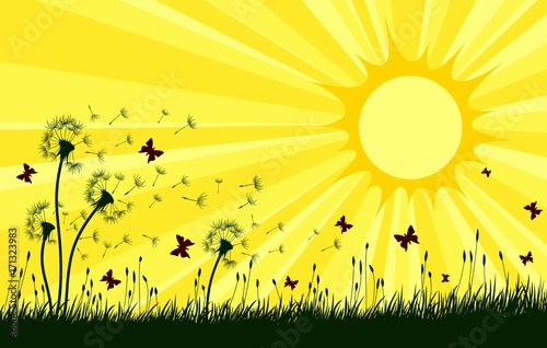 Fotobehang Geel Landscape with dandelions and sun.