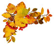 Autumn leaves and red berries in a corner arrangement