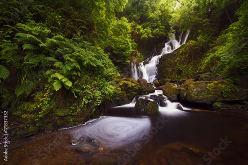 Papiers peints Marron chocolat Green forest waterfall, Ireland