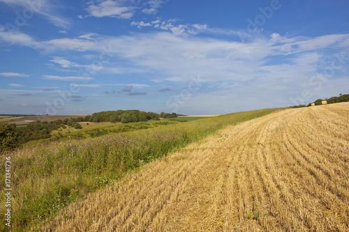 Aluminium Landschappen wheat stubble and scenery