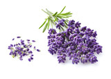 Lavender on a white background - 171352198