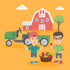 Two caucasian boys standing with the basket of apples on the background of backyard with barn and tractor. Little smiling boys harvesting apples. Vector sketch cartoon illustration. Square layout.