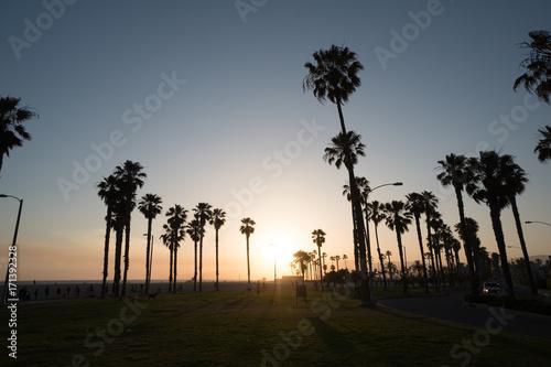 Venice Beach Sunset