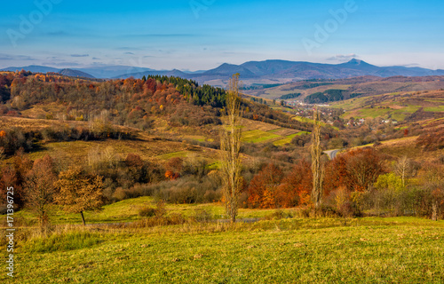 Fotobehang Honing rural grassy fields on hills in gorgeous mountains. stunning countryside landscape in autumn