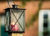 Laterne im Cottage Garden - 171404382