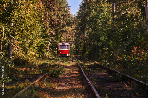 Tramway to forest : colorful tram and railways Poster