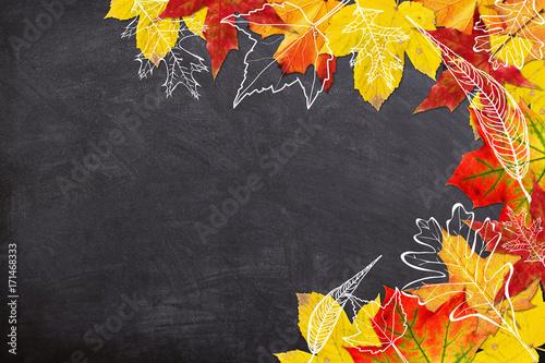autumn leaves border buy photos ap images detailview