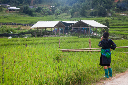 Foto op Aluminium Rijstvelden SA PA, VIETNAM - AUGUST 2017: green rice fields in Ta Phin village, Sa Pa, Vietnam