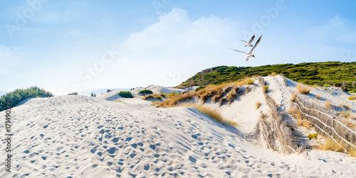 Papiers peints La Mer du Nord Düne