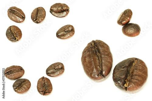 Foto op Plexiglas Koffiebonen coffee beans on white background