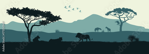 Black silhouette of animals of the African savannah. Lions give out among the trees. Landscape of wild nature. Africa