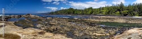 Fotobehang Canada Küstenlandschaft am Botanical Beach im Juan de Fuca Provincial Park auf Vancouver Island, British Columbia, Kanada.
