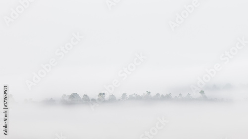 Landscape of top mountains with fog in morning - 171559521