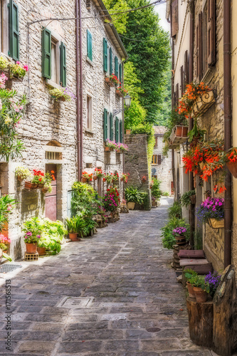 Poster Smal steegje Narrow old street with flowers in Italy