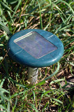 Solar mole repelent - 171597720