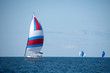 sail boat race on Lake Michigan with colorful spinnakers