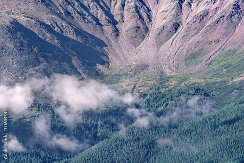 Deurstickers Lavendel mountains clouds forest peak