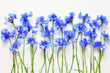 blue cornflowers background