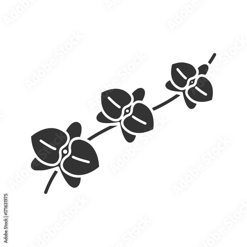 Orchid branch glyph icon