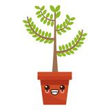 Plant in vase icon vector illustration graphic design - 171650153