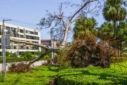 Hurricane Irma Damage