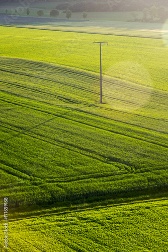 Foto op Plexiglas Pistache Green Agricultural fields , late afternoon , High angle view