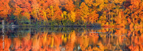 Poster Oranje eclat Panoramic view of autumn tree reflections