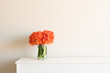 Orange clivia flowers in glass jug on white cabinet against neutral wall background