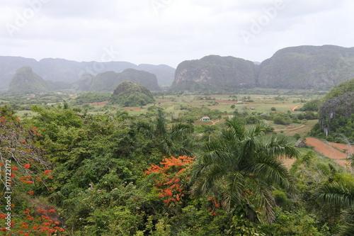 Blick ins Viñales Tal auf Kuba Poster