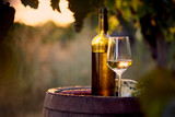 Glass of white wine and bottle with food at sunset - 171763507