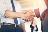 Businesspeople shaking hands - 171768122