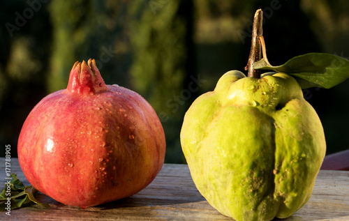 Mediterranes Fruchtduo Poster