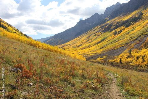 Papiers peints Melon Fall Colors Aspen, Colorado