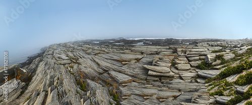 Foto op Plexiglas Panoramafoto s scenic coastline at Cape Elisabeth in fog