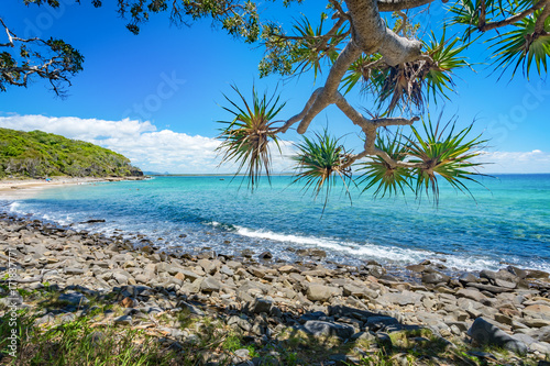 Tuinposter Tropical strand Beautiful day with blue sky on the coastline of Noosa National Park, Noosa, Queensland, Australia.