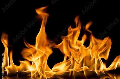 Burning fire on black background. - 171847348