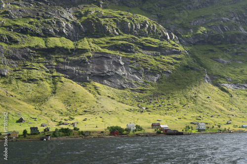 Tuinposter Khaki Reine fjord