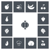 Set Of 13 Editable Fruits Icons. Includes Symbols Such As Cauliflower, Morello, Bunch Of Flowers And More. Can Be Used For Web, Mobile, UI And Infographic Design. - 171853119
