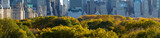 Panoramic view of Central Park in fall with Midtown Manhattan skyscrapers in the background. New York City - 171866572